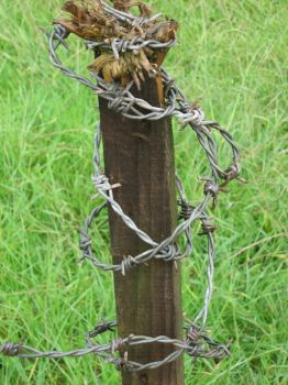 Barbed Wire Post by firestorm4
