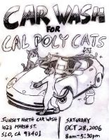 Car Wash to Help the Cats by kidflashsupreme