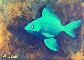 Blue fish by cheesecaketime