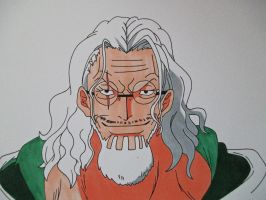 Right Hand Of The Pirat King - Silvers Rayleigh by SakakiTheMastermind