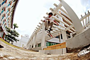 duan - fs shove it by deedeerippernut