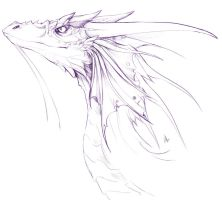 dragon sketch by Gabeszntx