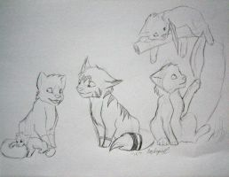 Cats by eaglespirit1
