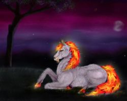 My fire by StoneLynx