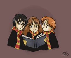 Harry, Hermione and Ron by vanipy05
