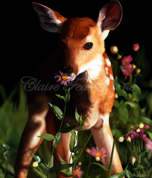 Daisy the Fawn by Dragonite1