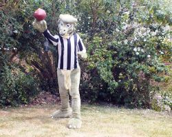 Quarks Lepton the Referee by ggeudraco