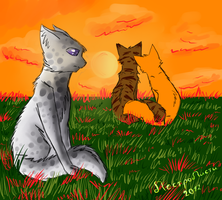 Ashfur broken heart by pestroLISTY