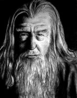 Gandalf by Cam-e