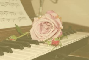 Old Rose and Organ by Jessawary