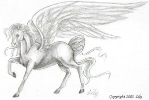 Winged Stallion Pegasus