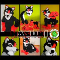 Hasuki Fursuit by xHanoukx