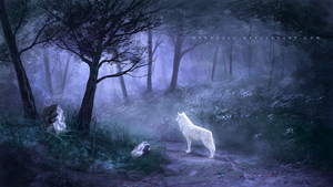 Magical Path by Whendell