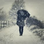 through the snow by photoflake