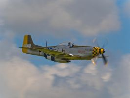 P51 Janie Mustang by davepphotographer
