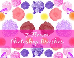 7 Flower Brushes for Photoshop CS5 by haciendodesigns