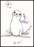 little seal by Frog-of-Rock