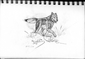 Wolf - Happy Walk by WhiskerfaceRumpel
