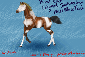 Paint Foal SOLD-pedigree by patchesofheaven74