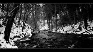 Der dark creek by napsis