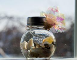 Opals in a Jar by HaleyGottardo