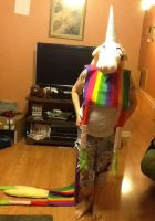 Lady Rainicorn Costume by virtualpapercut