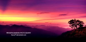 Vivid morning 2 by farcry77