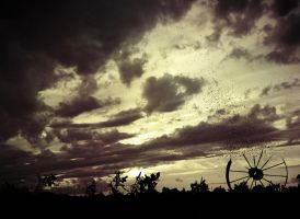 The Last Year :100 by ANGELi-photography