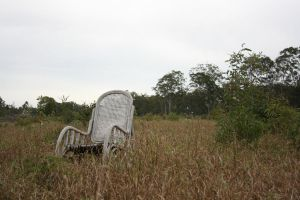 Chair in Field3 by newdystock