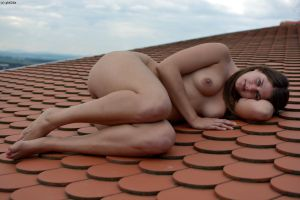Comfy roof tiles by gb62da