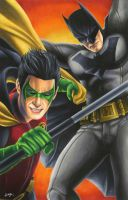 Batman and Robin by smlshin