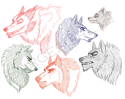 TFP Wolves by The-Ravens-Of-Moraea