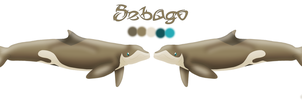 Sebago Reference Sheet by AnoOrca