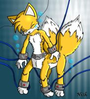 """Two Tails, Four legs """"DP"""" by BrownFox"""