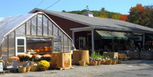 New England roadside Farm stand by natureguy