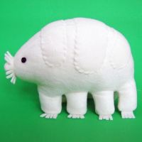 Tardigrada by WeirdBugLady