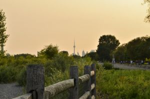 sunset fence by kendallcasimir