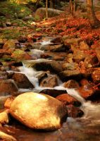 Oncoming Stream by Celem