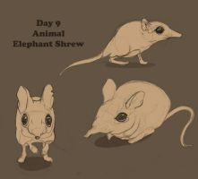 Day 9_Animal by WimpleToad