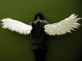 paper wings - by ViTong4