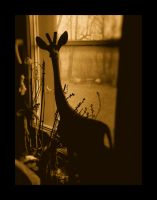 THERE'S A GIRAFFE IN MY WINDOW by mimulux