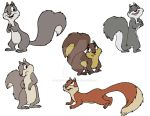 Squirrel Color Concept by Animator-who-Draws
