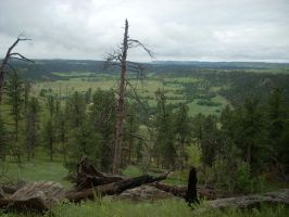 Wyoming by Coexist4Peace