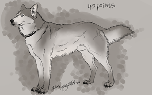 Husky for sale by HeatherWolf