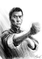 Ip Man by novicekid