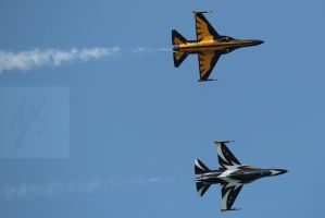 Singapore Airshow 2014 - ROKAF Black Eagles by yumithespotter