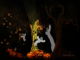 Betwitched by teddybearcholla