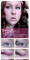 Chocolate Raspberry Tutorial by yay-party
