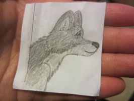 Wolf in my Hand! by Margie22
