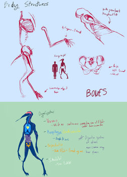 PPPR: Conceptual Internal Anatomy by parenthesisgrey
